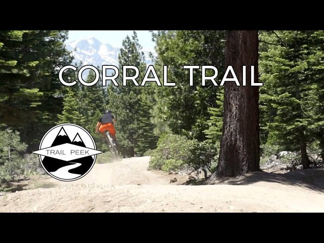 Do You Even Flow Bro? - Corral Trail - South Lake Tahoe, CA