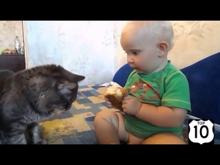 Смешные дети, кошки, собаки и не только! Подборка приколов #2