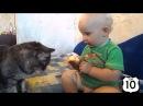 Смешные дети, кошки, собаки и не только! Подборка приколов 2