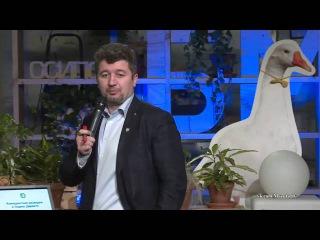 БМ: Конкурентная разведка в Яндекс Директе.