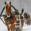 Тур «Уральский калейдоскоп» 5 дней (зима) (27.01