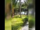 Вьетнам, отель DESSOLE SEA LION RESORT MUINE 4*