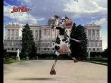 Jamba - Crazy Cow