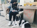 소주한잔 | soju han jan/ Прогулка по Хондэ и кафе с собачками ^^