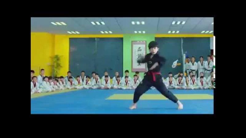 Kungfu kids (fighting)