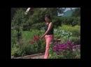 Ландшафтные открытия на садовом участке