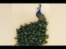 Paper quilling peacock