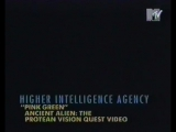 Higher Intelligence Agency Pink Green 1995