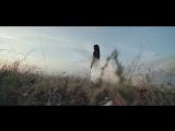 Xado Ezid - Как забыть её (NEW клип 2016)