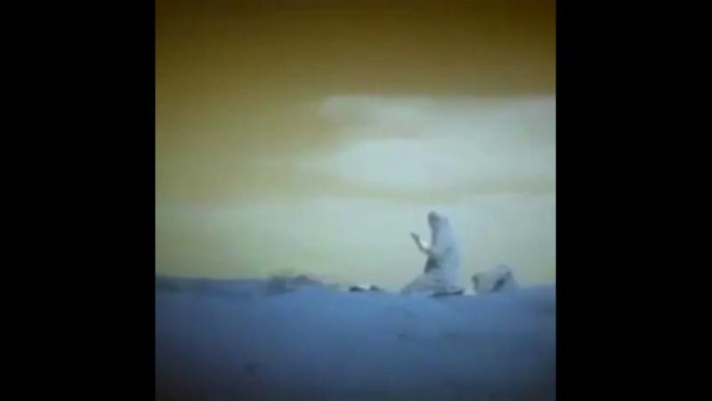 Отрывок из сериала Воскресший Эртугрула