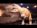 Natural History Museum Ti-Rex London