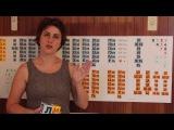 Что такое кубики Зайцева? Рассказывает Лена Данилова