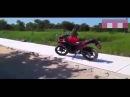 Мотоциклист из Тайланда подрался с обезьяной, которая нагадила на его мотоцикл
