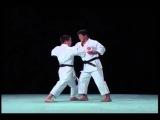 Heian Yondan - Bunkai-kumite