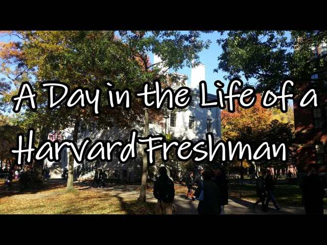 A Typical Day in the Life of a Harvard Freshman Student and a Tour of a Harvard Freshman Room