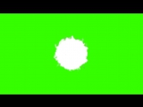 Feather explosion Green Screen FREE FOOTAGE HD