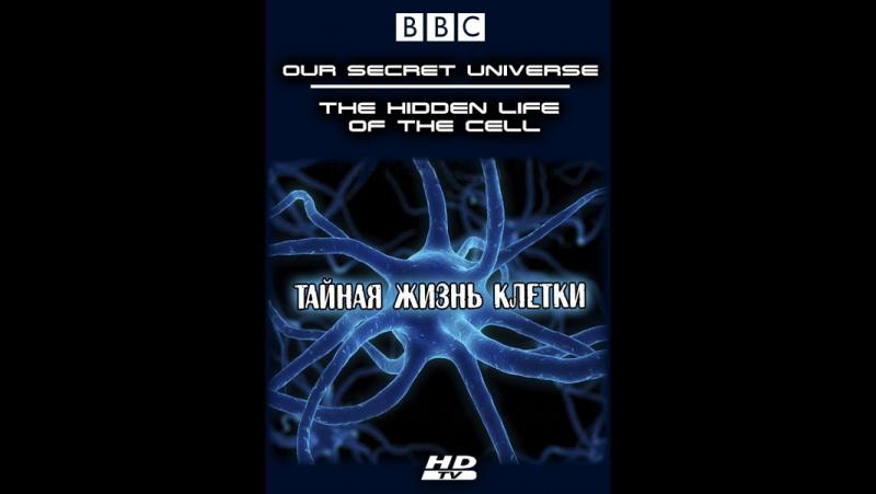 BBC: Внутренняя Вселенная: Тайная жизнь клетки (2012)