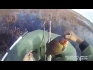 Якутские КАРАСИ-МОНСТРЫ на ПРОСТУЮ СНАСТЬ с блесной Ловля крупного карася Рыбалк (3)