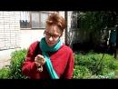 Кролик Блэк ест траву