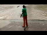 Crocodile_warned_off_by_woman_and_her_flip_flop_in_Australia