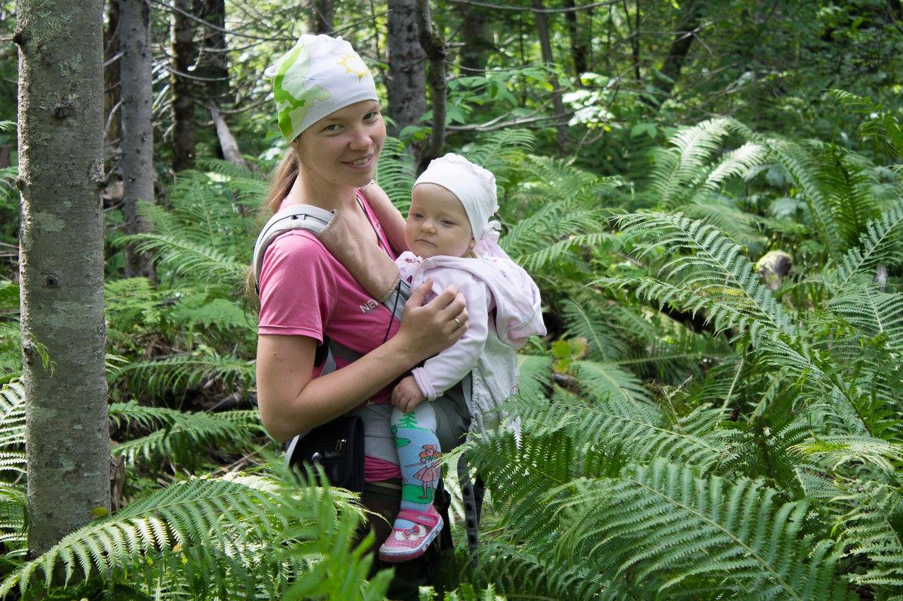 Залезли в лес в поисках тополя