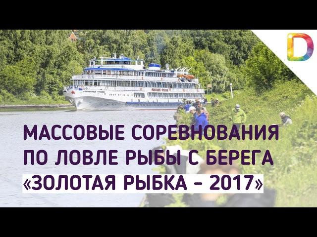 Массовые соревнования по ловле рыбы с берега «Золотая рыбка - 2017