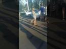 Сходка Автозвук Мариуполь 12.08.173