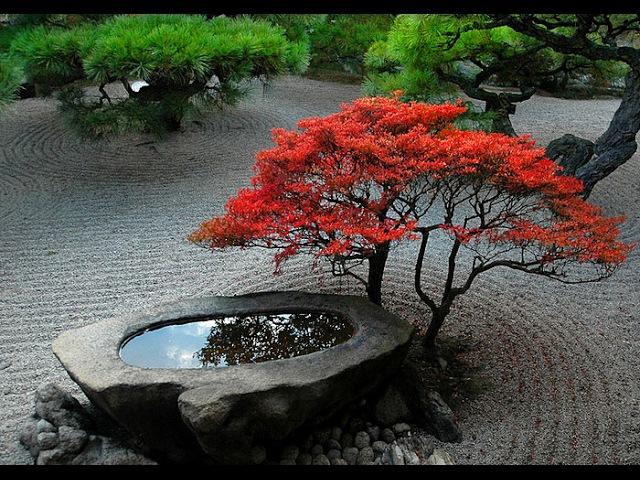 Zen Gardens Asian Garden Ideas. Дзен сады или Идеи Азиатского Сада на 2017