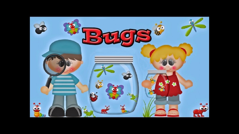 Bugs: Learning about Insects for Kids and Children