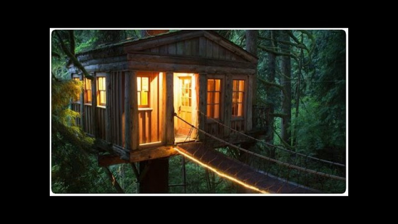 ПОДБОРКА САМЫХ НЕОБЫЧНЫХ ДОМИКОВ НА ДЕРЕВЬЯХ - Ночь в лесу не страшна!
