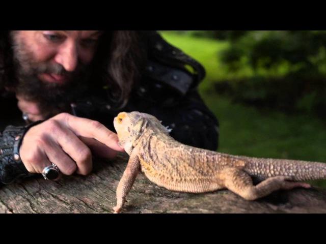 Дракончик из 5 эпизода Галаванта - GladiolusTV