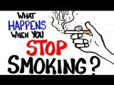 Что происходит, когда вы прекращаете курить?