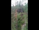 аршан тарзанка 200 метров