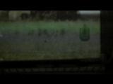 Сафари-Юг Beretta 92 FS кал. 9mm x 19