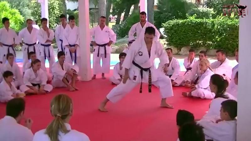 Luca Valdesi teaching kata Unsu part 1
