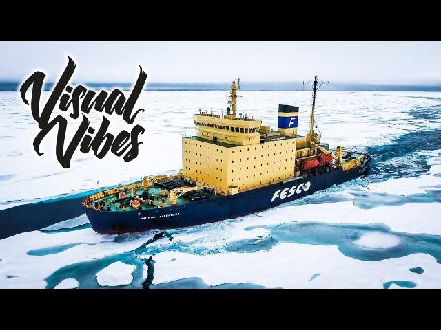 ARCTIC - Visual Vibes