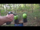 50 AE Desert Eagle vs Watermelons