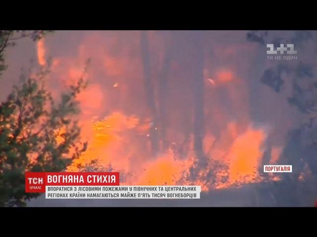 Жахливі лісові пожежі знову охопили Португалію