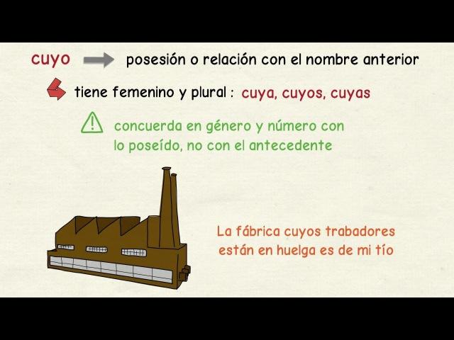 Aprender español: Adjetivos y adverbios relativos (nivel avanzado)