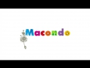 Macondo-birthday