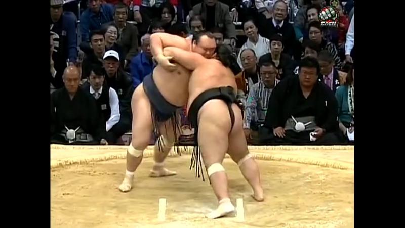 Kyushu Basho: Days 13-15 (2014)
