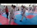 My karate skill (Luigi Busa seminar 2016)