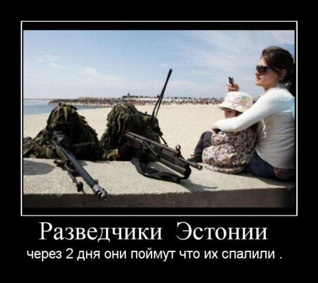 https://pp.vk.me/c638320/v638320397/22005/M7Vl7cosB9k.jpg