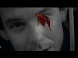 Rumble Fish (1983) 1080p | ENG