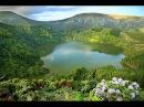 Сказочный остров Флориш Португалия Сокровище Азорских островов