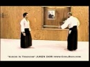 Aikido In Training - Excerpt from JuKen Dori