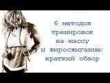 6 методов тренировок на массу и жиросжигание: краткий обзор