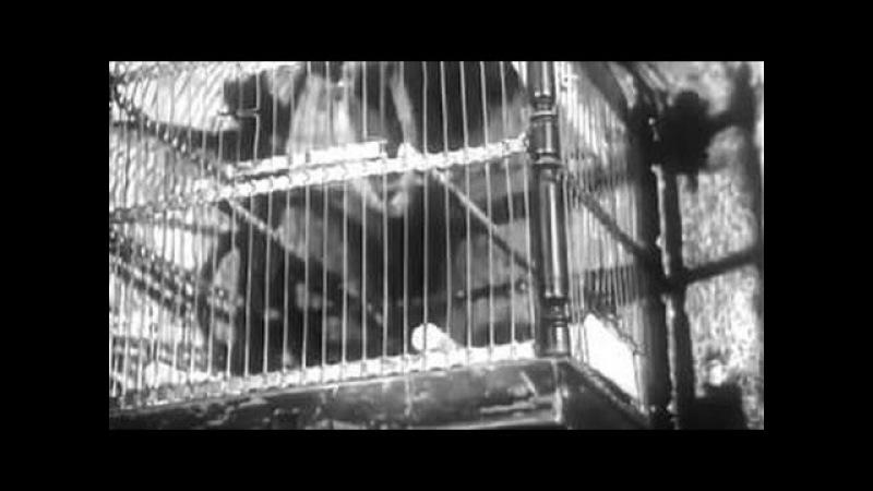 ▶ Тайна затонувшего корабля художественный фильм