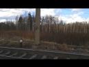 Ржевский лесопарк. 8 апреля 2017 год.