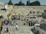 Марк Тишман В будущем году в Иерусалиме _ Mark Tishman